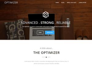 optimizer-theme-600x450